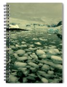 Summer Ice Spiral Notebook