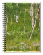 Summer In The Colorado Mountains Spiral Notebook