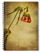 Summer Is Gone Spiral Notebook