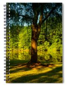 Summer Light Spiral Notebook