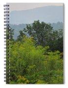Summer Mountain Vista Spiral Notebook