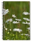 Summer... Spiral Notebook