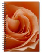 Summer Peach Spiral Notebook