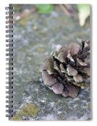 Summer Pinecone Spiral Notebook