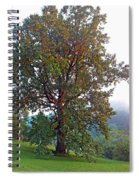 Summer Poplar Tree Filtered Spiral Notebook