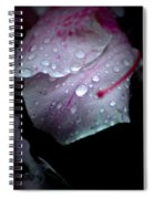 Summer Rain In Georgia Spiral Notebook