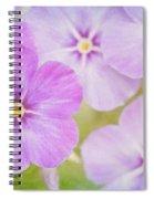 Summer Romance  Spiral Notebook