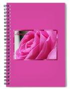 Summer Rose Spiral Notebook