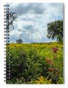 Summer Scene Spiral Notebook