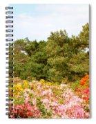 Summer Scenes Spiral Notebook
