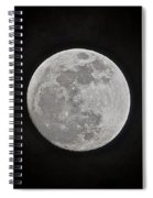 Summer Solstice Spiral Notebook