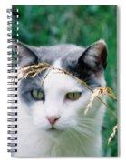 Summer Stroll Spiral Notebook