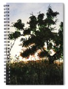 Summer Sunset Spiral Notebook