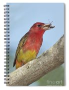 Summer Tanager Eating Wasp Spiral Notebook
