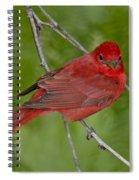 Summer Tanager Male Spiral Notebook