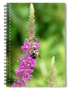 Summer Time And The Feeding Is Easy Spiral Notebook