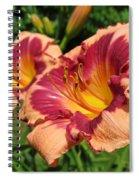 Summer Valentine Pair Spiral Notebook