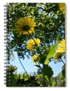 Summer Viewpoint Spiral Notebook