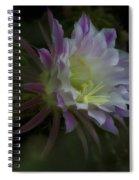 Summer Whispers  Spiral Notebook