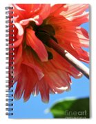 Summer's End Dahlia Spiral Notebook