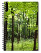 Summer's Green Forest Abstract Spiral Notebook