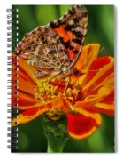 Summers Last Butterfly Spiral Notebook
