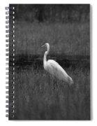 Summer's Night Egret Spiral Notebook
