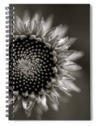 Summer's Promise Spiral Notebook