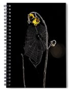 Summers Web Before Sunrise Spiral Notebook