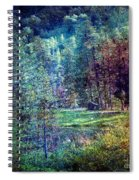 Distant Memory Spiral Notebook