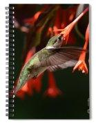 Summertime Treats Spiral Notebook