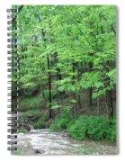 Summertime Walnut Creek Spiral Notebook