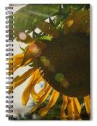 Sun And Sunflower Spiral Notebook