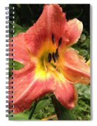 Sun Day Lilly  Spiral Notebook