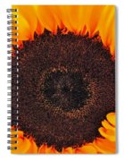 Sun Delight Spiral Notebook