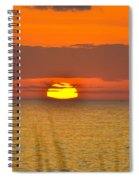 Sun Delight  Spiral Notebook