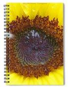 Sun Dial Spiral Notebook