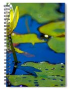 Sun Drenched Lilly  Spiral Notebook