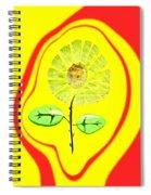 Sun Feng Shui Spiral Notebook
