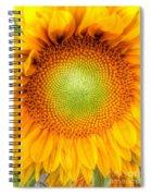 Sun Flower Power Spiral Notebook