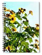 Sun Flowers In The Sun Spiral Notebook