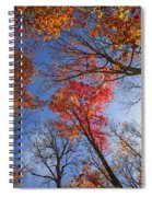 Sun In Fall Forest Canopy  Spiral Notebook