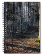 Sun In The Forest Spiral Notebook