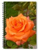 Sun Kiss Orange Spiral Notebook