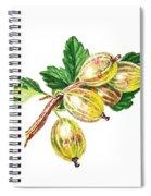 Sun Kissed Gooseberries Branch Spiral Notebook