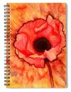 Sun Kissed Poppy Spiral Notebook