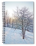 Sun Over A Snowy Day Spiral Notebook
