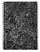 Sun-shimmering Scottish Brook 5 Spiral Notebook