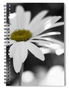 Sun-speckled Daisy Spiral Notebook