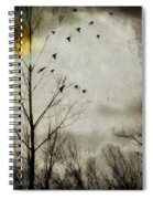 The Sun Splashed Unto A Gray Day Spiral Notebook